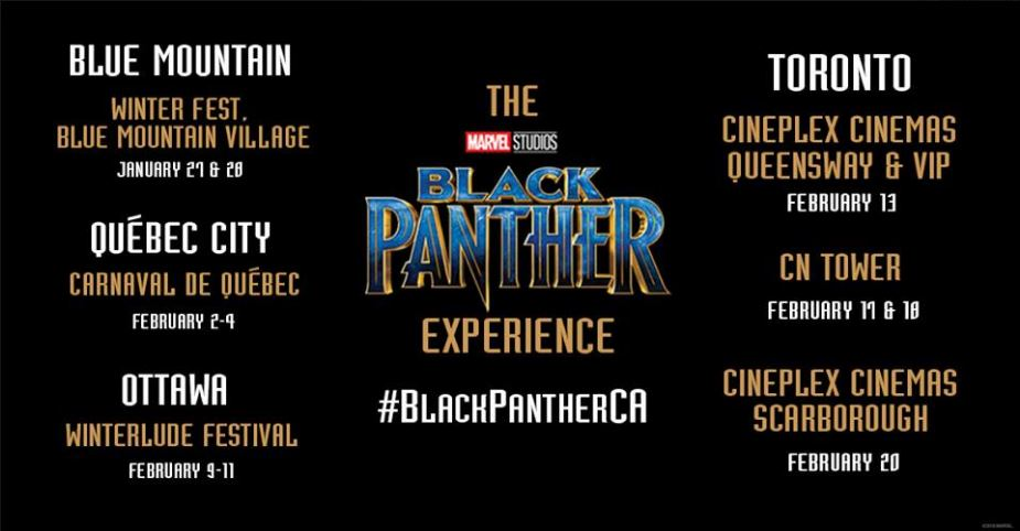 Black Panther Experience