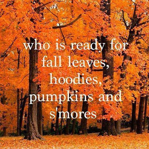 Is it autumn yet?