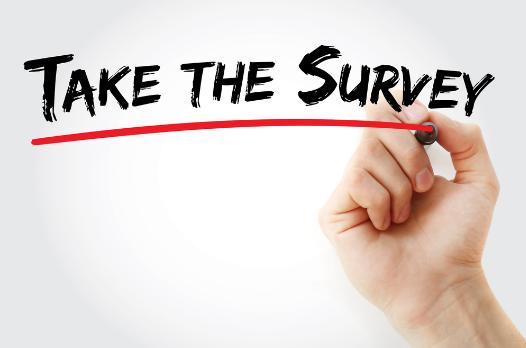 Blush: Ontario Curriculum Survey